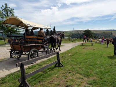 Elldus Resort Reisebericht (12)