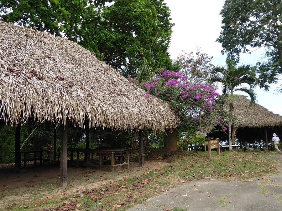Tipps zum Panama Aufenthalt / Unsere Kreuzfahrt Erfahrungen