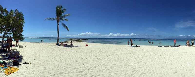 Sainte Anne Beach: Ausflug auf Guadeloupe 3