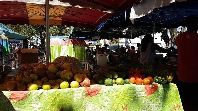 Sainte Anne Beach: Ausflug auf Guadeloupe 4