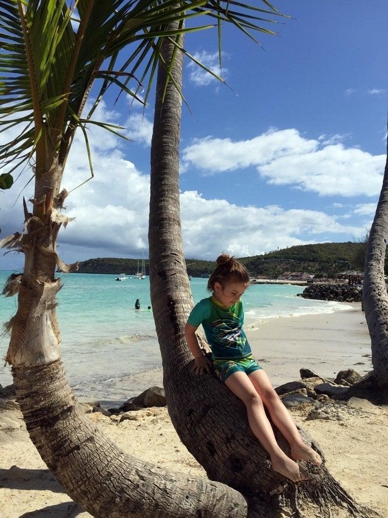 Gebogene Palme am Strand