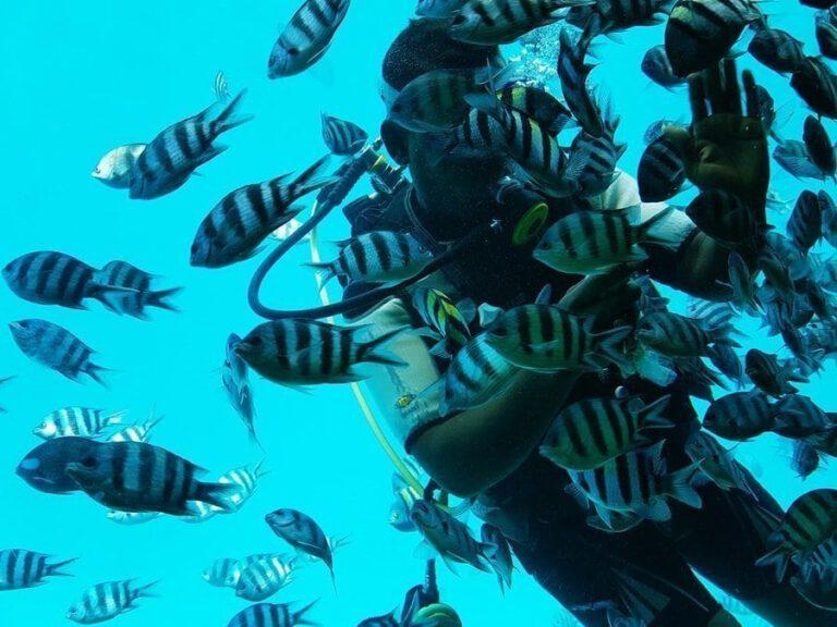 Hurghada Reisebericht: Erfahrungen als Familie in Ägypten