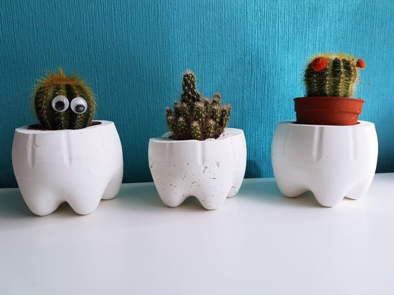 DIY Moltofill Blitzzement Blumentopf Kaktus