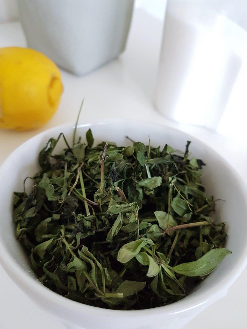 Waldmeister verarbeiten: Rezept für Waldmeistersirup